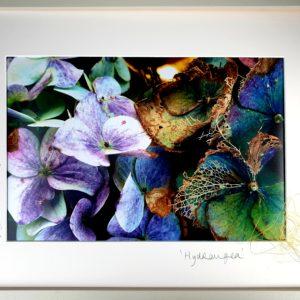 laura_conneely_Textile_Artist_hydrangea
